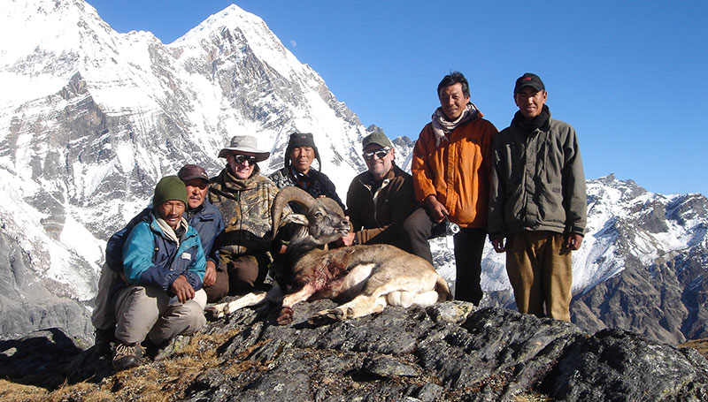 Himalayan Safaris Pvt Ltd.